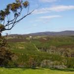 View From Mt Ellen