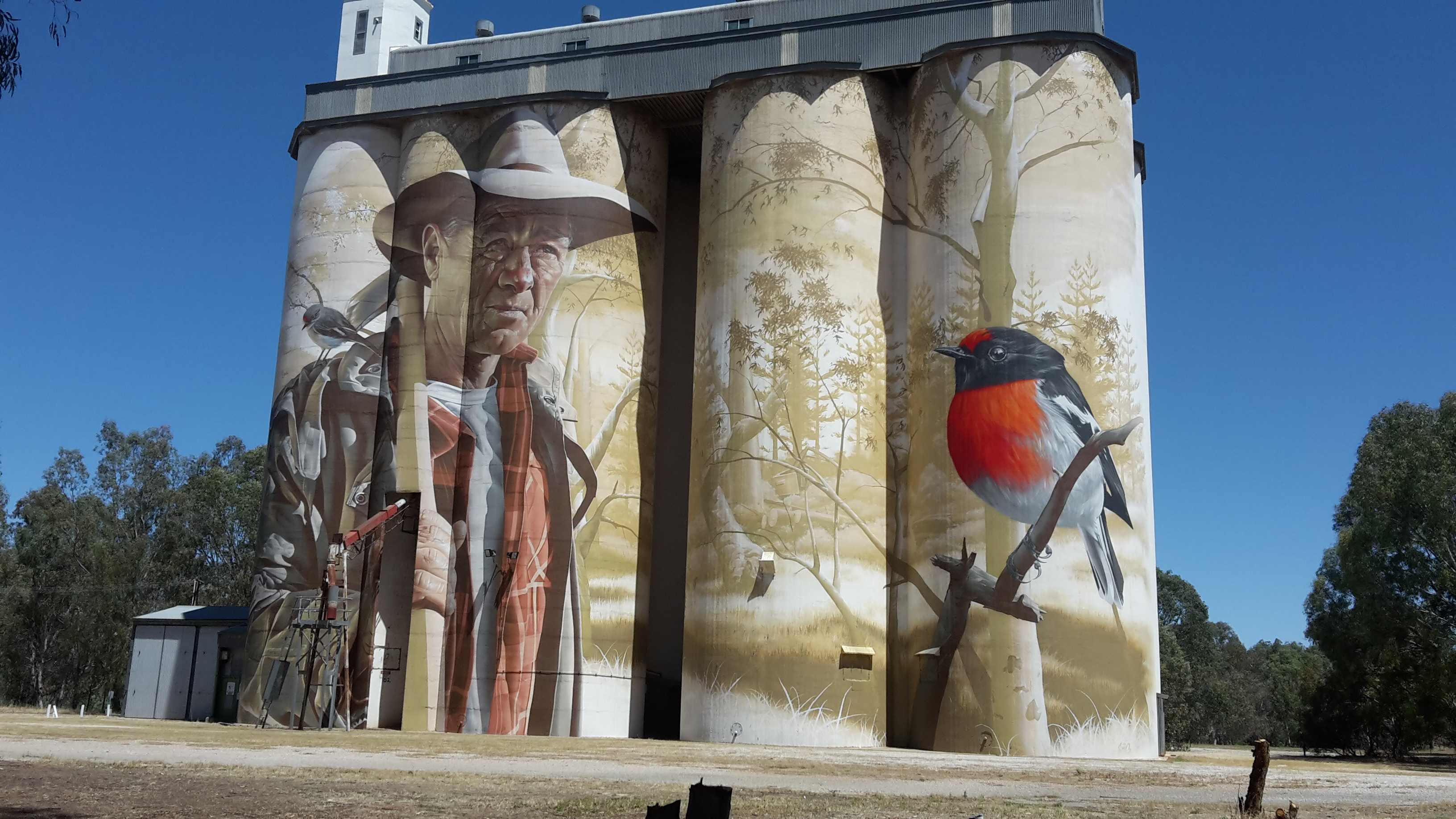 Wirrabara Silo Artwork
